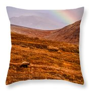 Rainbow Over Grizzly In Denali Throw Pillow