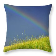 Rainbow Over Pasture Field Throw Pillow