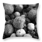 Rainbow Peppercorn Macro Black And White Throw Pillow