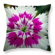 Rainbow Pink Flower Throw Pillow
