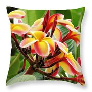 Rainbow Plumeria - 1 Throw Pillow