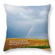 Rainbow Promise Throw Pillow