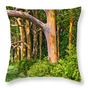 Rainbow Row - Eucalyptus Trees Of Maui Throw Pillow