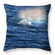 Rainbow Spout Throw Pillow