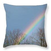 Rainbow Through The Tree Tops Throw Pillow