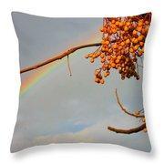 Rainbow Through Tree Throw Pillow