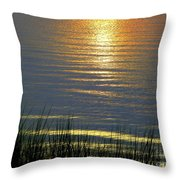 Rainbow Waters Throw Pillow