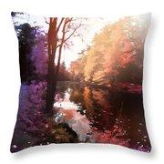 Rainbow Yaddo Throw Pillow