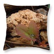 Raindrop Jewel Throw Pillow