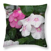 Raindrop Petals  Throw Pillow