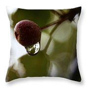 Raindrop Reflection 1 Throw Pillow