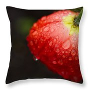 Raindrops And Poppy Throw Pillow