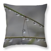 Raindrops Clinging To Grass Stems Throw Pillow