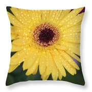 Raindrops Keep Falling On My Head Throw Pillow