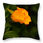 Raindrops On A Yellow Rose Throw Pillow