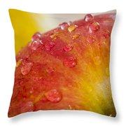 Raindrops On An Apple Throw Pillow