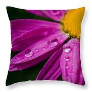 Raindrops On Daisies Throw Pillow