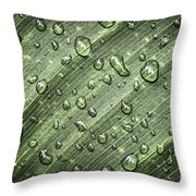 Raindrops On Green Leaf Throw Pillow