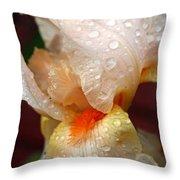 Raindrops On Orange Iris Throw Pillow