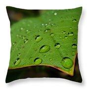 Raindrops On Plumeria Leaf Throw Pillow