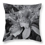 Raindrops On Springtime  Mono Throw Pillow