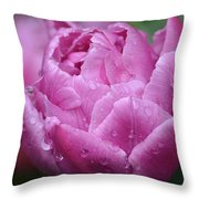 Raindrops On Tulips Throw Pillow