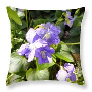 Raindrops On Violets Throw Pillow