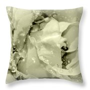 Raindrops On White Rose Throw Pillow