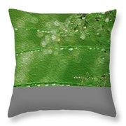 Rainkissed Throw Pillow