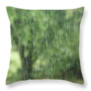 Rainfall Throw Pillow