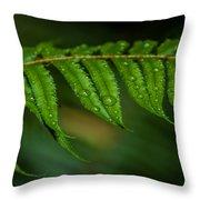 Rainfall On Leaf Throw Pillow