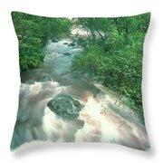 Rainforest Cascade Near Hana Maui Hawaii Throw Pillow