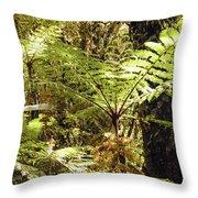 Rainforest Color Throw Pillow