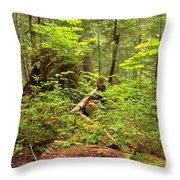 Rainforest Green Everywhere Throw Pillow