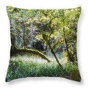 Rainforest Landscape Throw Pillow