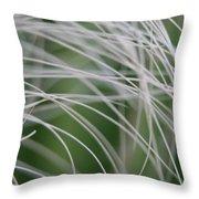 Rainforest Palm Tree Leaf Close Up  Throw Pillow