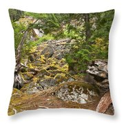 Rainforest Rock Slide Throw Pillow