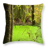 Rainforest Wetland Wildernis Of West Coast Bc Throw Pillow
