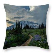 Rainier Meadows Thunder Skies Throw Pillow