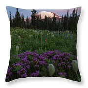 Rainier Pastel Dawn Throw Pillow