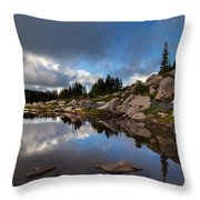 Rainier Spray Park Reflection Throw Pillow