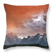 Raining Orange Throw Pillow