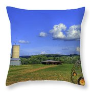 Rainmaker 2 And The Hawk Throw Pillow