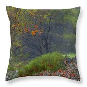 Rainy Afternoon Throw Pillow