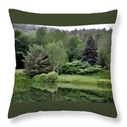Rainy Day At The Pond Throw Pillow