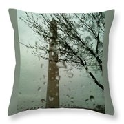 Rainy Day At The Washington Monument Throw Pillow