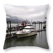 Rainy Day Dock Throw Pillow
