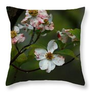 Rainy Day Dogwood Throw Pillow