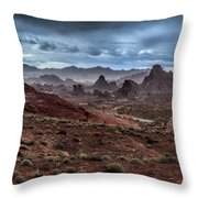 Rainy Day In The Desert Throw Pillow