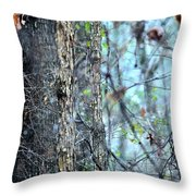Rainy Day In The Forest Throw Pillow